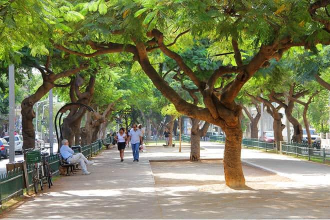 Бульвар Ротшильдов в Тель-Авиве